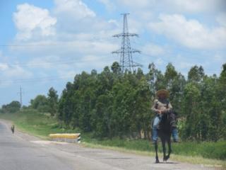 Cowboy at Cuban highway