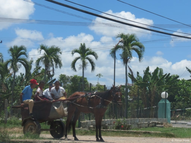 Four people with horse & carriage