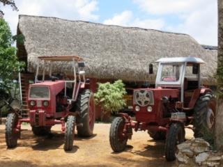 Tractors @ Vegas Robaina tobacco plantation