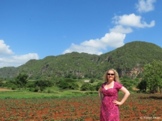 Stunning mountain view from Viñales Villa Vista al Valle Cuba
