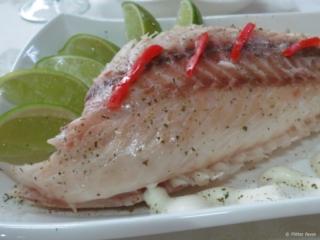 Fish dinner Casa Hostal Idael & Dania Matanzas Cuba