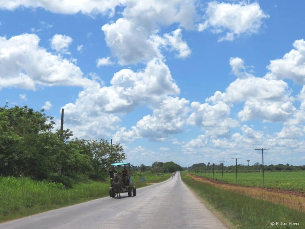 Horse & carriage Cuba