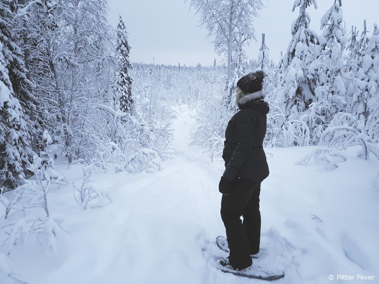 Beautiful views during snow-shoe walk in Kittila, Finland