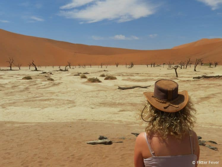 The whole idea to visit Namibia started with a business trip to South Africa