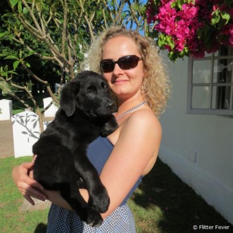 Puppy cuddling @ Peter Falke, Stellenbosch