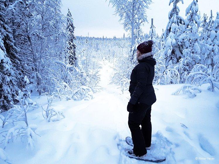 Snow shoe walking in Winter Wonderland