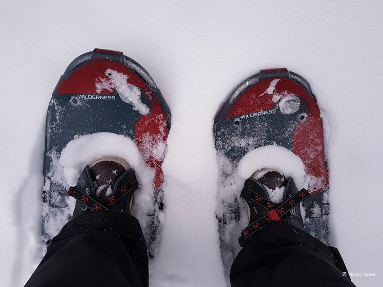 Snow shoes in Lapland