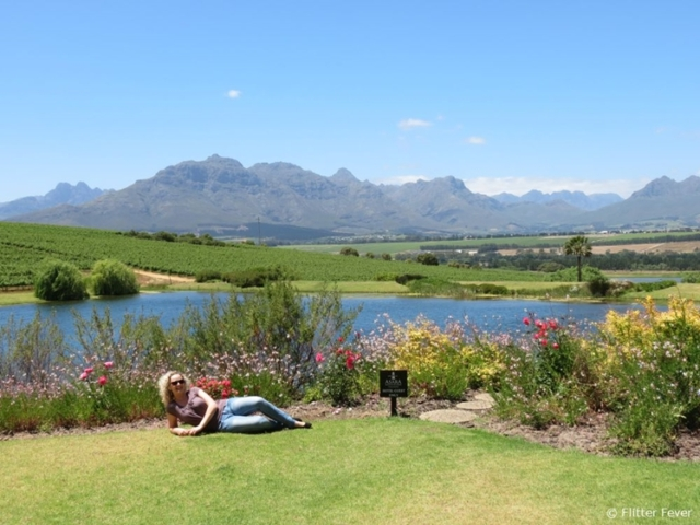 View from Asara Wine Estate Hotel in Stellenbosch, South Africa