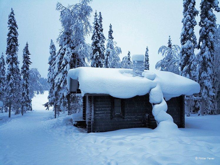 Winter landscape near the lake