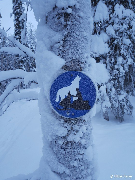 Wolf and snow scooter sign on a tree