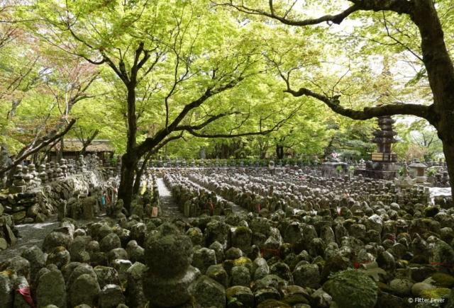 Adashino Nenbutsu-ji near the Arashiyama bamboo forest in Kyoto