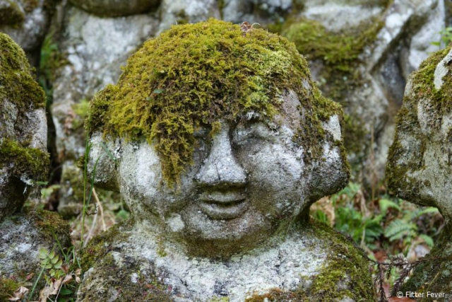 Dude, my moss is my hair @ Otagi Nenbutsu-ji, Kyoto