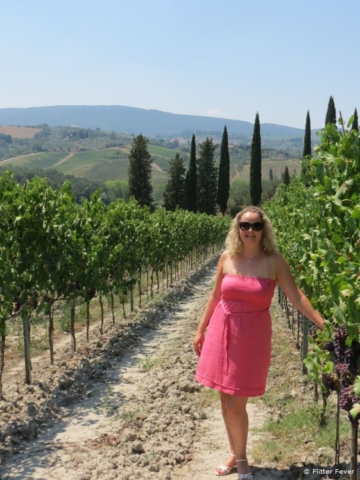 Under the Tuscan sun at the vineyard of Fattoria Poggio Alloro