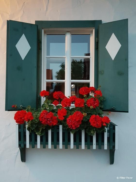 Jochum Gasthaus window with flowers, Greisdorf