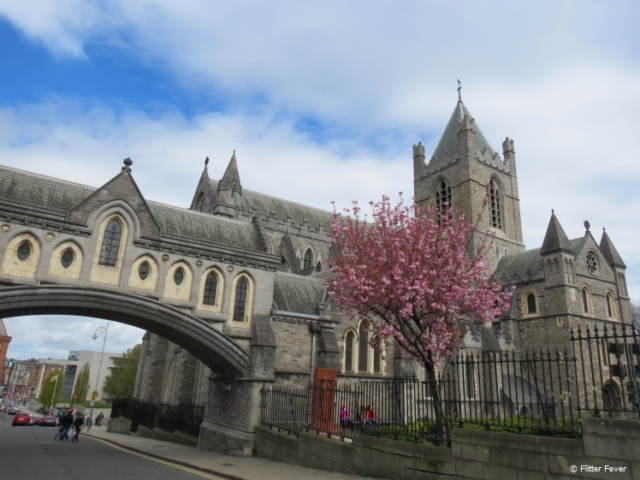 Christ Church Cathedral in Dublin at blossom time