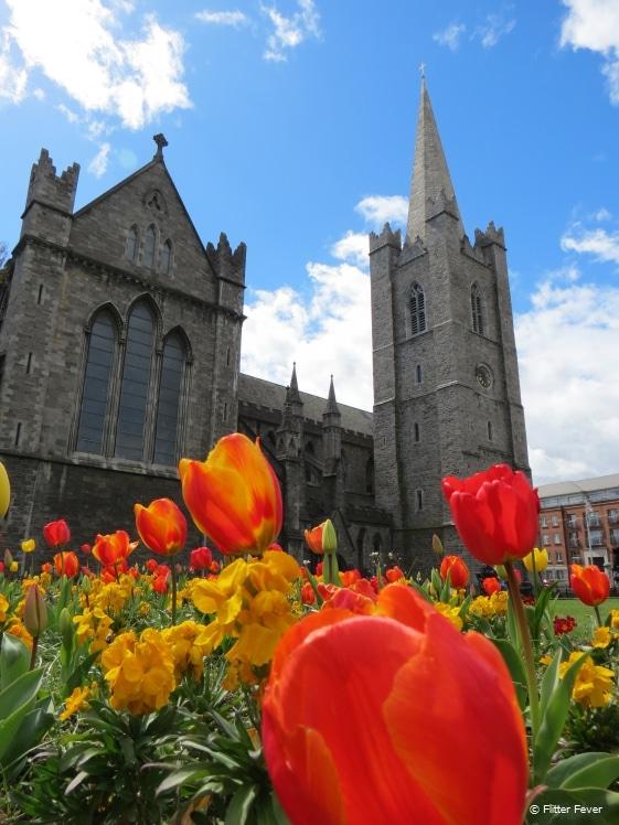 St. Patrick's Cathedral in Dublin in Spring