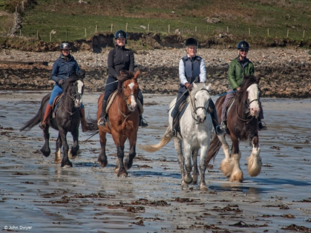 Galloping at the beach near Cleggan, Connemara (photo credits John Dwyer)