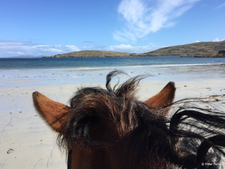 Horse riding at Cleggan, Connemara
