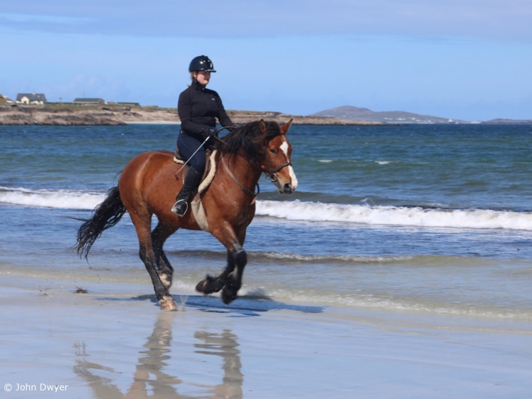 Horse riding on the beach (photo credits John Dwyer)