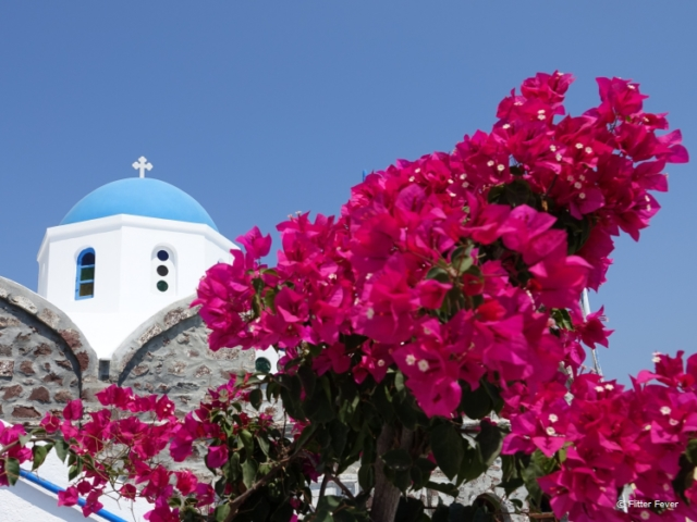 Pink flowers and blue dome white church in Oia
