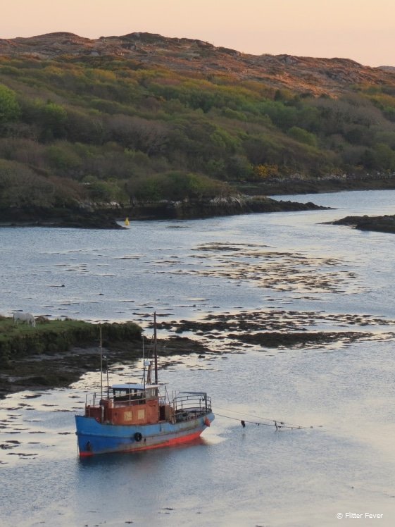 Can you believe this is just behind the central street of Clifden?