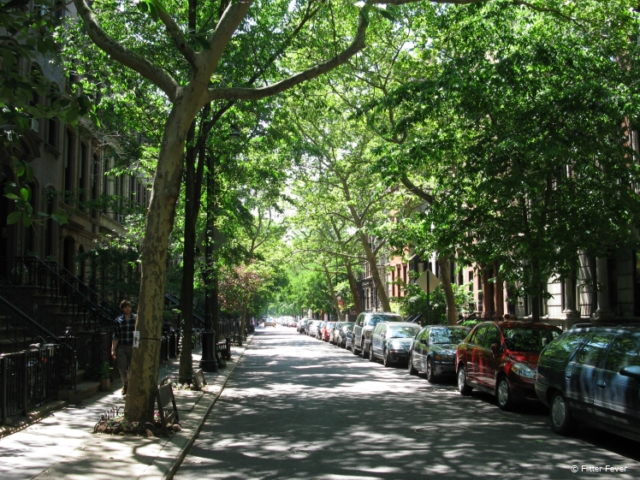 The western part of Greenwich Village is also known as West Village