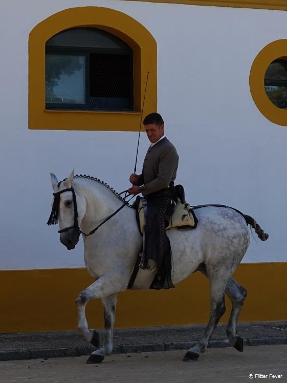 Een man met zijn paard bij de Royal Andalusian School of Equestrian Art