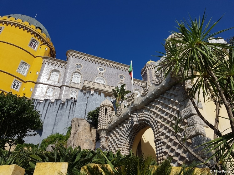 Pena Palace never gets dull