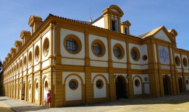 Real Escuela Andaluza del Arte Ecuestre in Jerez de la Frontera