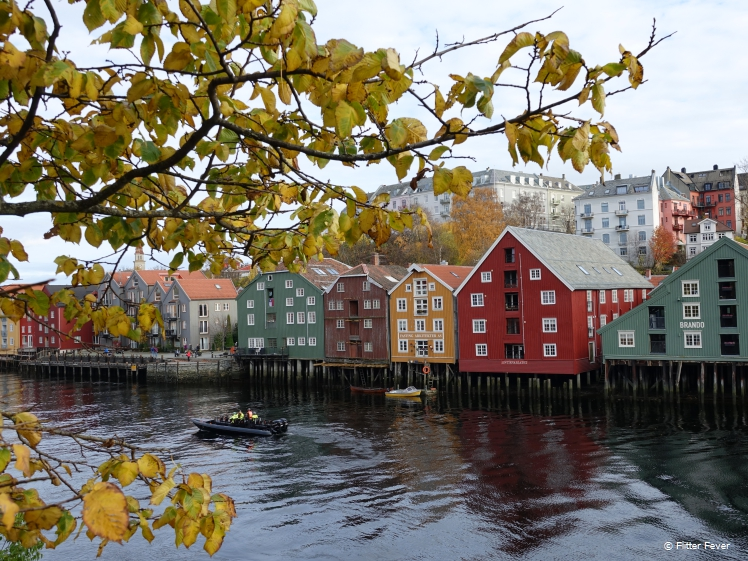 Autumn Nidelva view Trondheim