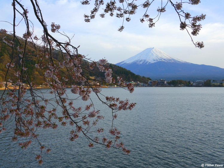 Spring is a great time to visit Lake Kawaguchiko and Mount Fuji