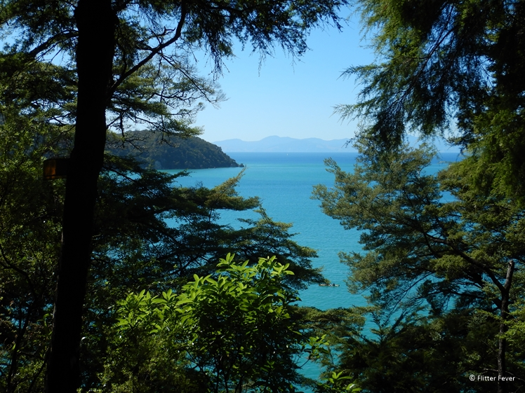 Gorgeous see-throughs from the Abel Tasman Coast Track