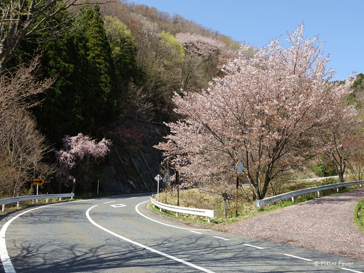 The 7 road between Magome and Tsumago