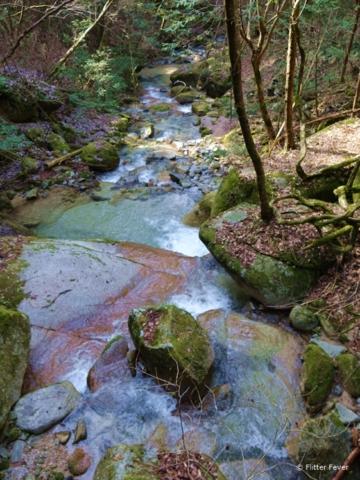 Water stream at Nakasendo Trail