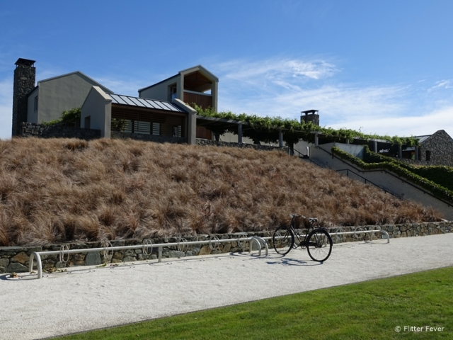 By bicycle is one way to get around Wither Hills Blenheim Marlborough