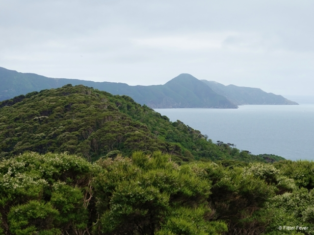 Marlbourough Sounds view New Zealand Picton Motuara Island