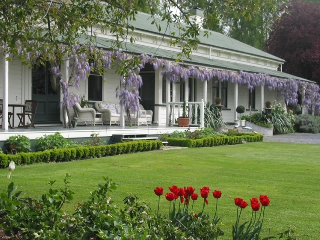 The Peppertree terrace with wisteria and tulips Blenheim