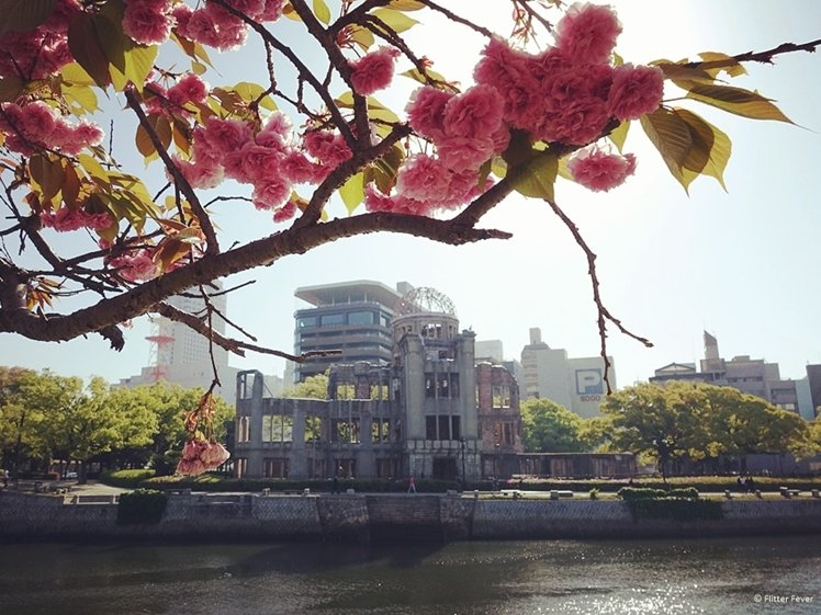 A-Bomb Dome and blossom in Hiroshima