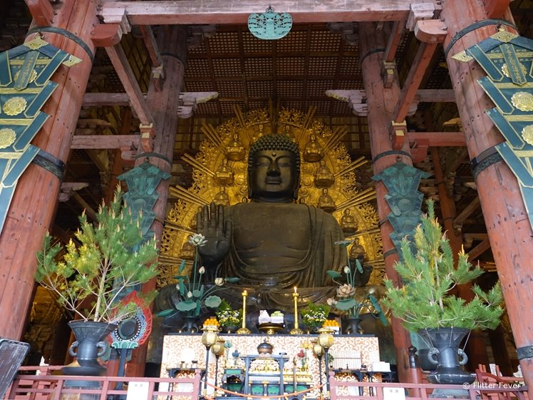 The Big Buddha of Nara Japan