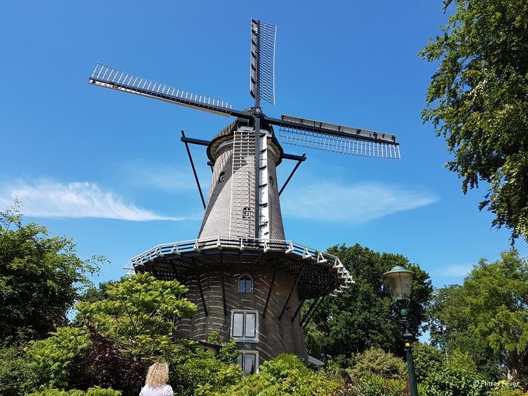 Molen van Piet in Alkmaar