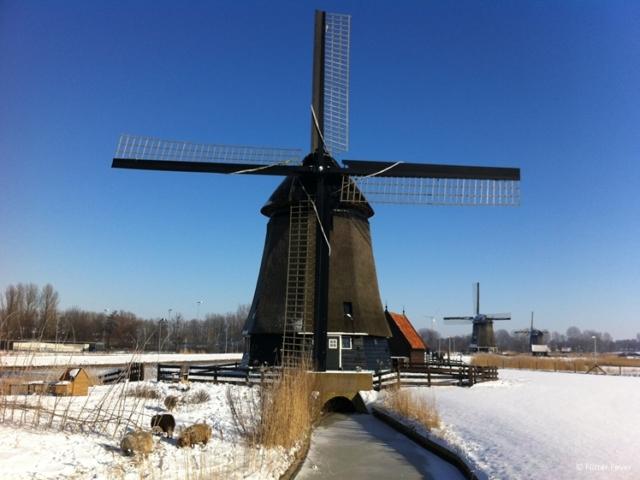 Oudorp windmills in winter Alkmaar windmolens