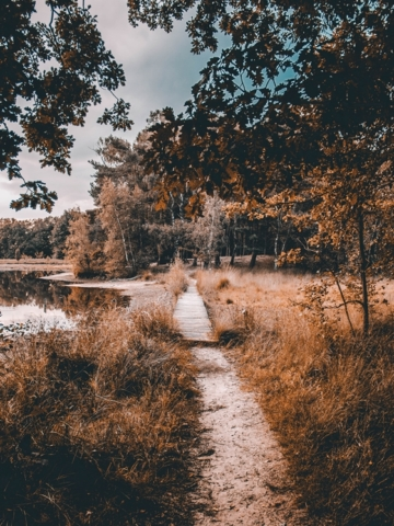 Path at lake near Enschede Twente The Netherlands