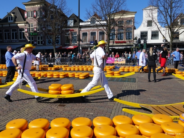 Presenting the cheese at Waag Square Alkmaar cheese market