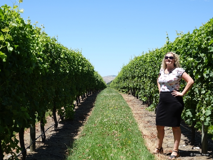 Woman in skirt and shirt standing in vineyard