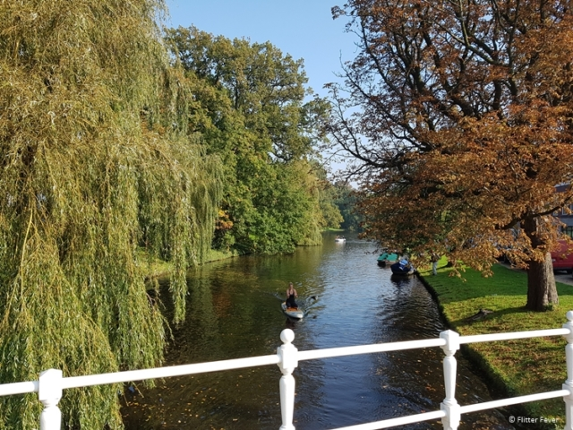 Discover the canals of Alkmaar by SUP on a sunny day