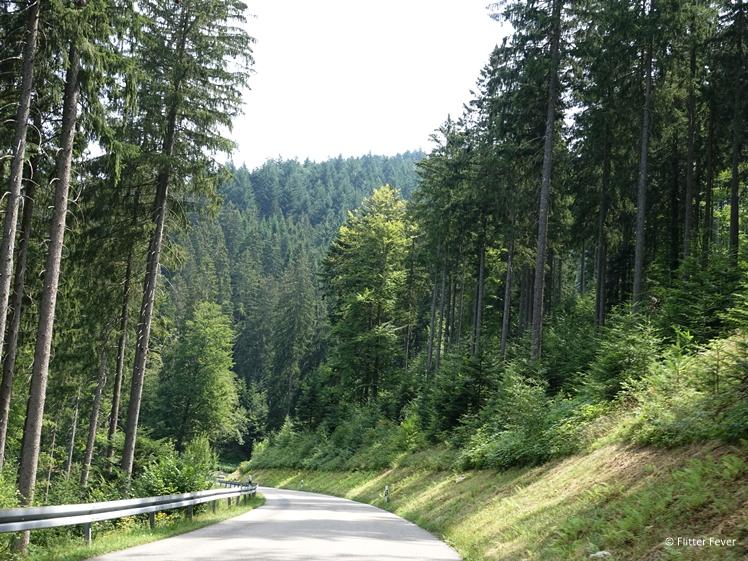 The L401 Ruhesteinstrasse near the 500 Schwarzwaldhochstrasse, Black Forest