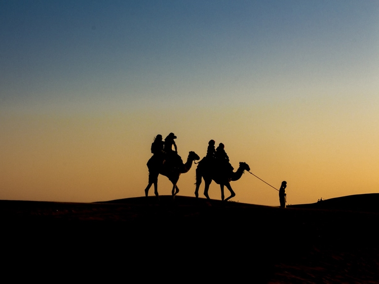 Camel ride in the desert in Dubai