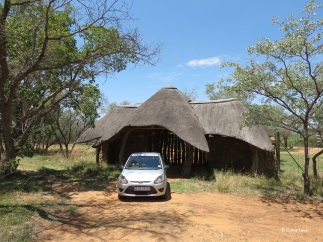 On our way to Ant's Hill near Waterberg South Africa