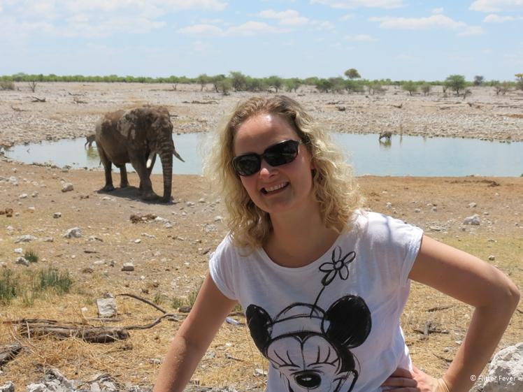 Strike a pose with elephant at Okaukeujo waterhole in Etosha National Park