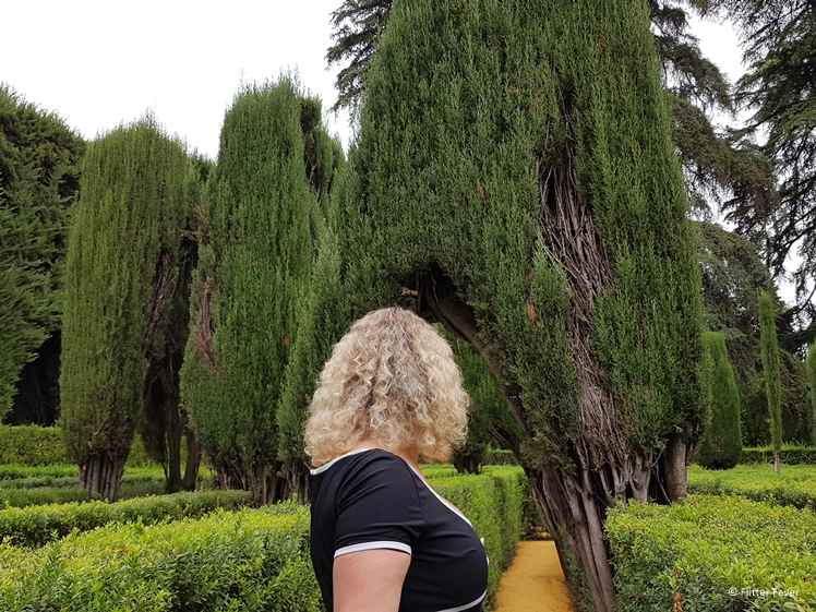 Walking through Jardin de Laberinto, the maze garden of Real Alcazar